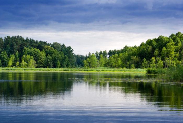The Garmin ECHOMAP Plus 73cv offers 17 000 lake maps