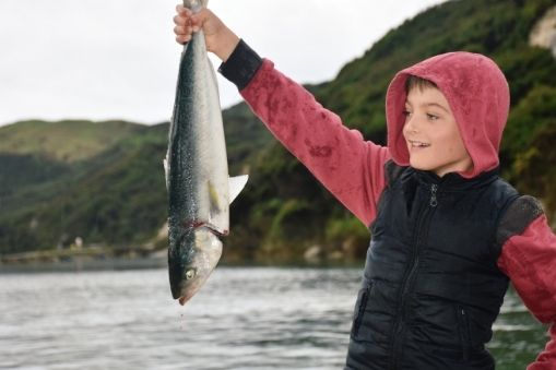 Kahawai Fishing Tips