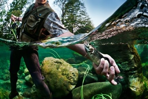 Orvis Clearwater IV Outfit – Best for Trout and Freshwater Fish