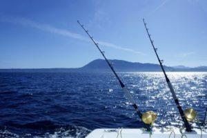 Saltwater Fishing Spots