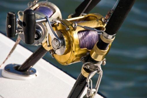 Tsunami Airwave Elite Rod and Shimano Baitrunner D Series reel – Best for Live Bait Fishing